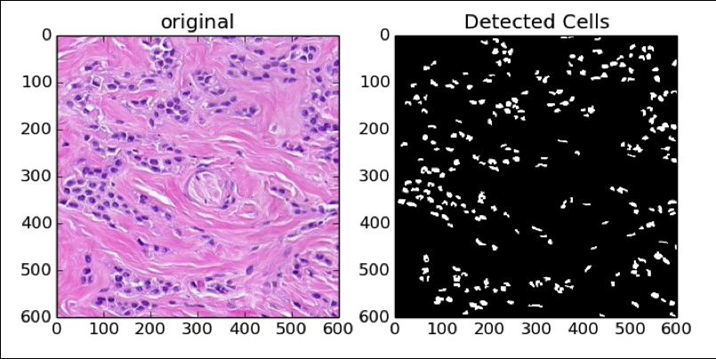 cells_graph
