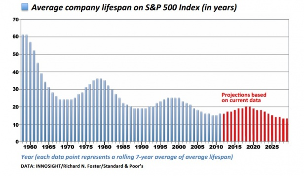 Source: Creative Destruction in the S&P500 index