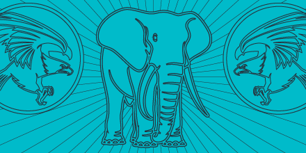 sfeatured-elephant-hawk