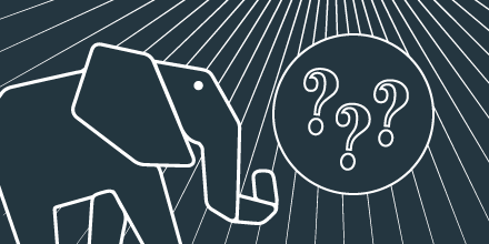 sfeatured-elephant-questions