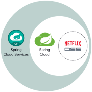 Spring Cloud Services for Pivotal Cloud Foundry (SCS)